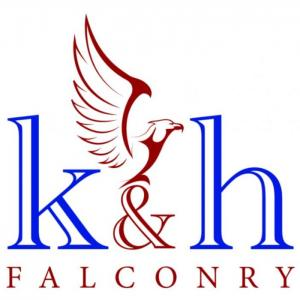 K & H Falconry static and flying displays