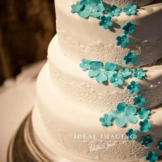 The Mulberry Cake Co